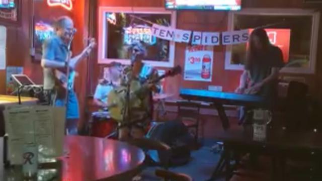 Ten Spiders